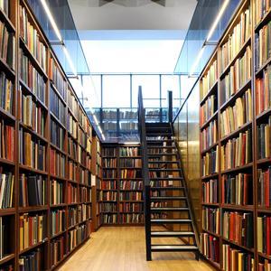 Библиотеки Ремонтного